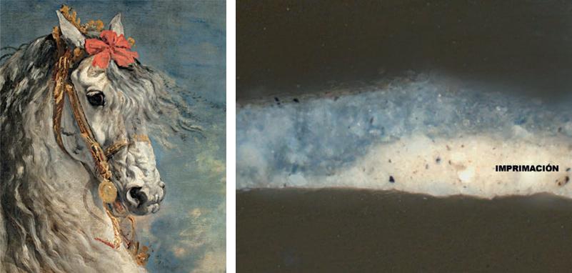 <p><strong>Fig.7: </strong>Detalle de la obra de Diego Velázquez, <em>Felipe III, a caballo</em>, 1628-35. 307 x 367 cm (P-1176). La sección transversal de una micromuestra de pintura pone de manifiesto la existencia de una imprimación muy clara bajo la capa de pintura azul, lo que confiere a la escena gran luminosidad.</p>