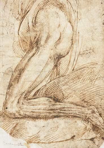Dibujos del Siglo XVI