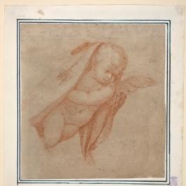 Angel o amorcillo