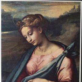 Rafael en España [Material gráfico] / Museo Nacional del Prado.