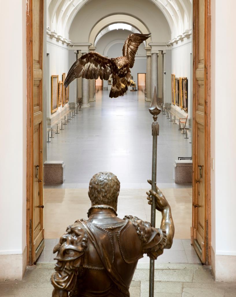 El Museo del Prado presenta la exposición Historias Naturales. Un proyecto de Miguel Ángel Blanco