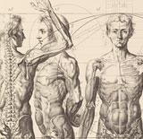 Seminario Imágenes del cuerpo en la Edad Moderna